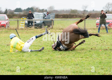 Cambridgeshire, UK. 31st December, 2017.  Johnny and J Dawson, a horse and rider fall at the last fence in the Cambridgeshire - Stock Photo