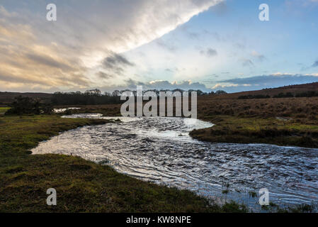 New Forest, Hampshire, UK, 31st December 2017, Weather: A wet new year's eve. After heavy overnight rain associated - Stock Photo