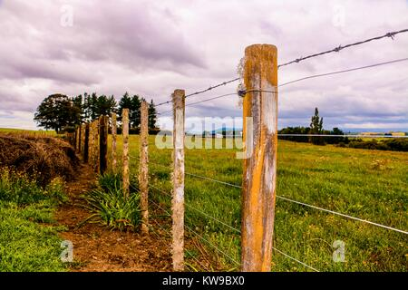 New Zealand Barb Wire Fence scenic view - Stock Photo
