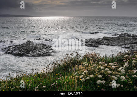 Sunlight breaking through a cloudy sky and reflecting off the sea on the rocky Cornish coast with grass and wildflowers - Stock Photo