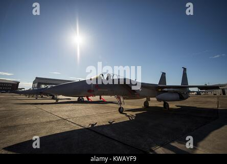 Clear skies and bright sun shines down on a row of 125th Fighter Wing F-15s from Jacksonville Fla. on the Eglin - Stock Photo