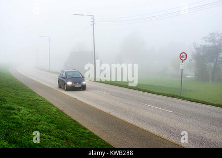 Misty Deichstrasse in Kirchwerder, Hamburg, Germany, Europe, Neblige Deichstra?e in Kirchwerder, Deutschland, Europa, - Stock Photo