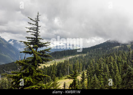 Clouds and fog create changing weather landscapes for skiing and mountain bikers on the Whistler Blackcomb mountains - Stock Photo