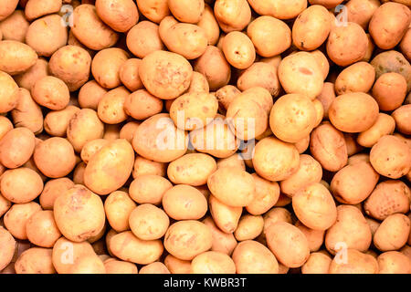 photo of raw material of potato - Stock Photo