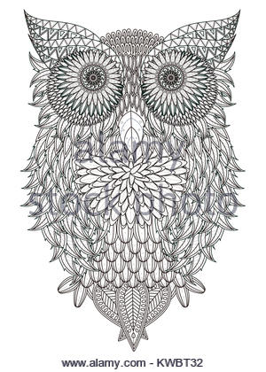 Leaves Owl Coloring Page In Exquisite Line