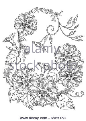 elegant morning glory coloring page in exquisite line stock photo