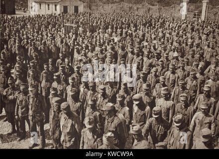 World War 1 on the Italian-Austrian front. Austrian prisoners taken when the Italian Army conquered Gorizia during - Stock Photo