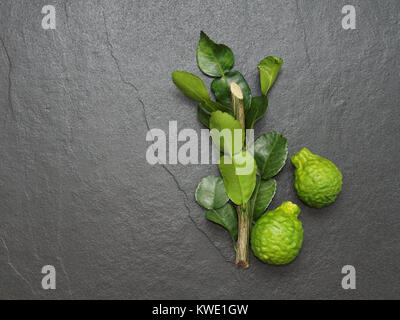 Bergamot, kaffir lime and kaffir lime leaf with branch on dark background used as ingredint for Asian dishes or - Stock Photo