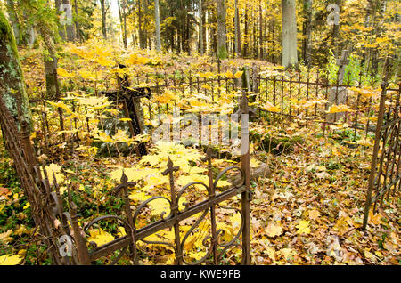 A shot of an old cemetary graveyard in the woods with crooked rusty metal cross and fence around it with yellow - Stock Photo