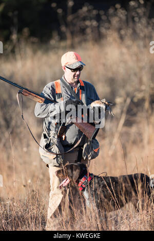 A quail hunter in Kanas on a late autumn afternoon - Stock Photo