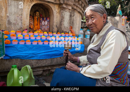 A pilgrim from Tibet spins a prayer wheel at a shrine with a Buddha, at the Mahabodhi Temple in Bodhgaya, India - Stock Photo