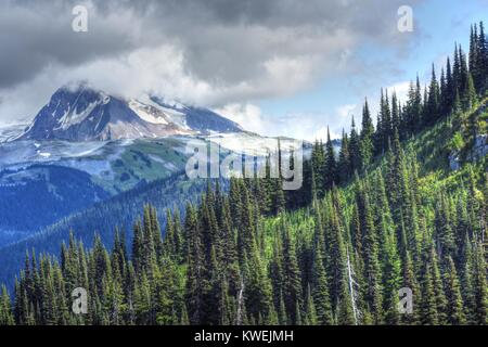 Summer on Whistler Blackcomb British Columbia Mountains fog & clouds enshroud the pine / fir trees and gondola cable - Stock Photo