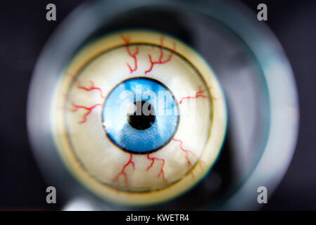Eye under the magnifying glass, symbolic photo Federal Intelligence Service scandal, Auge unter der Lupe, Symbolfoto - Stock Photo