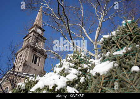 Snow covered Christmas trees in front of St. Marks Church in-the-Bowery, New York City - Stock Photo