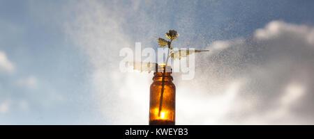 Natural medicines - remedies > Natural medicines, medicine - a small bottle - Stock Photo