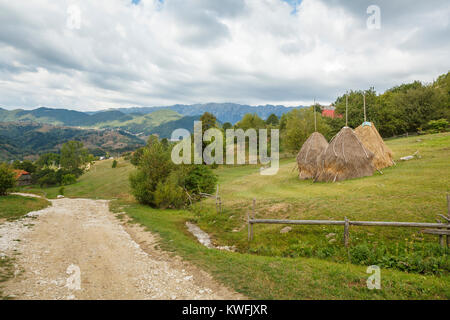 Traditional hayricks, Magura, a village in the foothills of the Carpathian Mountains in the Piatra Craiului National - Stock Photo