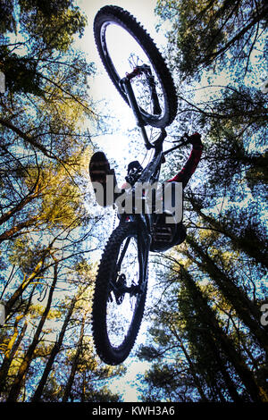 A mountain bike jumps through the air in a forest in Pontypool, Wales. Shot is taken from the floor, underneath - Stock Photo