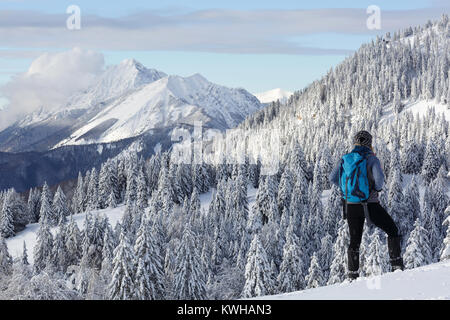 Woman hiker in active outfit standing on a hill with spruces covered with snow and enjoying the winter mountain - Stock Photo