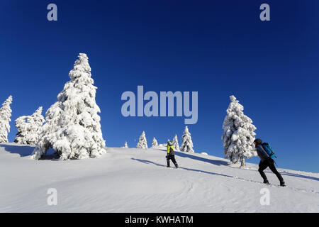Mother and son hiking on the snow covered mountain between frozen spruces, Krvavec, Slovenia. - Stock Photo