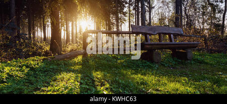 sunlight shines behind a wooden bench in the forest. ideal for websites and magazines layouts - Stock Photo