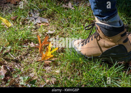 Low angle view of hiking boot walking though grass and autumn leaves - Stock Photo