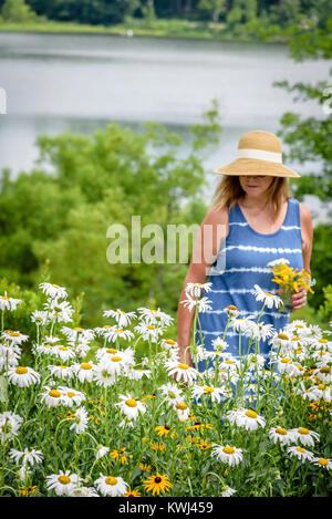 woman in sunhat picking fresh flowers from garden by lake - Stock Photo