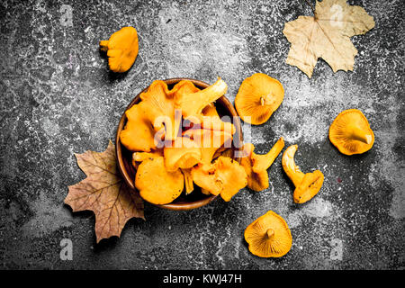 Fresh chanterelle mushrooms in a bowl. On a rustic background. - Stock Photo