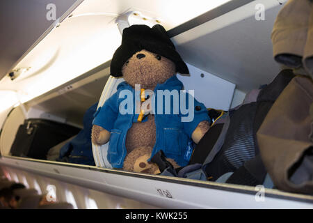 Childs soft toy, Paddington Bear, possibly lost passenger, in airplane air plane overhead luggage bin / locker / - Stock Photo