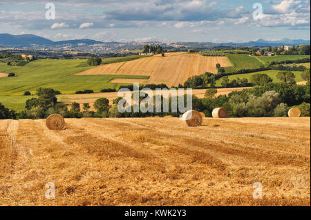 Perugia, Umbria, Italy. Umbria green heart of Italy.  Typical landscape with the warm colors of the summer and the - Stock Photo