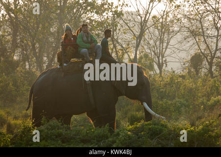 Tourists on elephant jungle safari in Chitwan national Park, Nepal - Stock Photo
