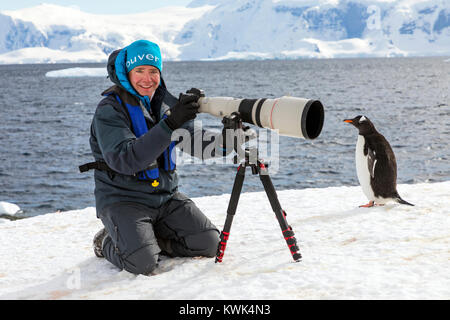 Photographer with huge telephoto lens capturing images of Long-tailed Gentoo penguins; Pygoscelis papua; Rongé Island; - Stock Photo