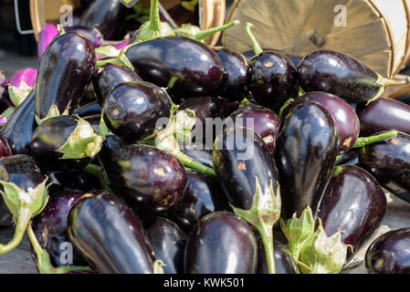 locally grown eggplant on table at outdoor farmer's market - Stock Photo