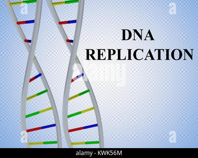 3D illustration of DNA REPLICATION script with two identical pairs of DNA double helix - Stock Photo