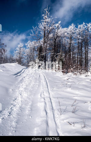 snow covered hiking trail with frozen trees and blue sky with clouds in Kysucke Beskydy (Beskid Zywiecki) mountains - Stock Photo