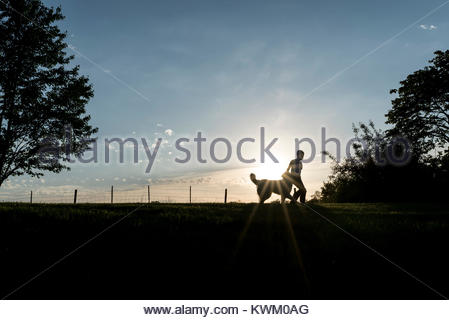 Silhouette boy with dog on field against sky during sunset - Stock Photo
