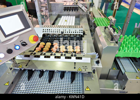 Chicken eggs on a conveyor belt at a food factory - Stock Photo