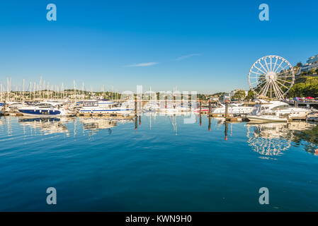 Morning view of Torquay from the Harbour, Devon, England. August 2017 - Stock Photo