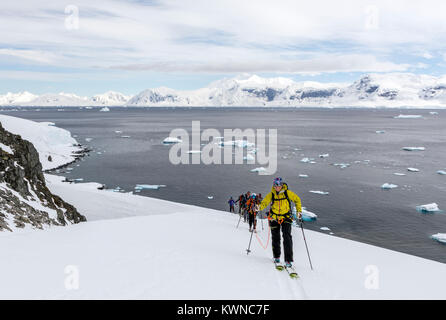 Ski mountaineers roped together for safety from crevasses use synthetic skins on skis to climb uphill; Rongé Island; - Stock Photo