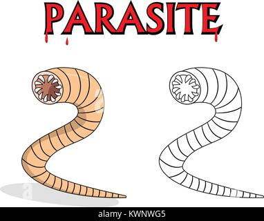 Parasitic nematode worms in outline and vector cartoon design - Stock Photo