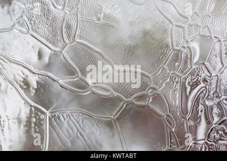 Intricate abstract close up patterns on a piece of ice. - Stock Photo