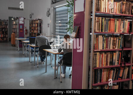 Student studying in the library/conceptual image  of education - Stock Photo