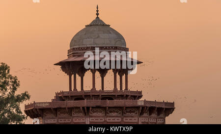 A dome in the Taj Mahal complex, surrounded by a flock of birds flying against the sunset in Agra, Uttar Pradesh, - Stock Photo