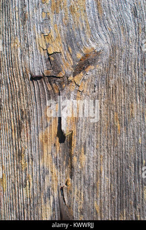 Full frame image of a plank of wood, ideal for use as a background - John Gollop - Stock Photo