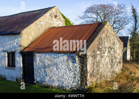 An old whitewashed stone built Irish Cottage with a small annex roofed with bangor Blue roofing tiles and rusting - Stock Photo