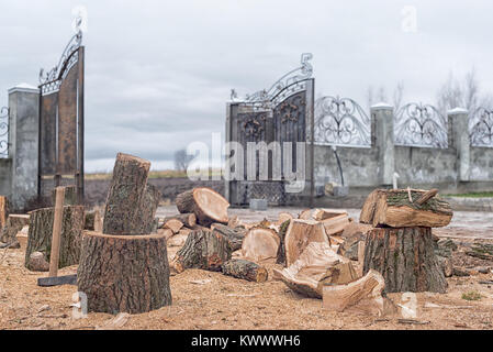 Oak firewood, preparing for the heating season, cut and split firewood, workflow in the yard near the house, nobody, - Stock Photo