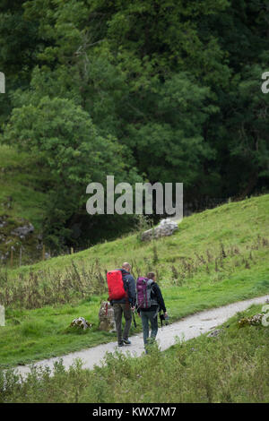 2 male walkers or hikers with rucksacks, walk together along Pennine Way National Trail footpath -  near Malham - Stock Photo