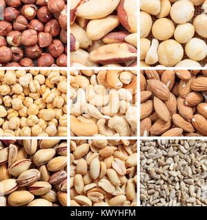 Variety of dried nuts collage - Stock Photo