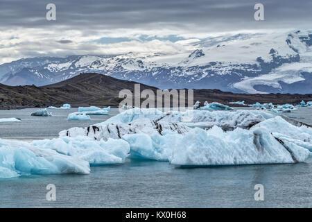 Icebergs on the Jökulsárlón glacial lagoon calving from the Breiðamerkurjökull Glacier, bordering Vatnajökull National - Stock Photo