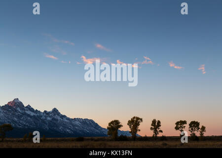 Small clouds hit with sunset light floating above a line of cottonwood trees below the Teton Mountains. Grand Teton - Stock Photo
