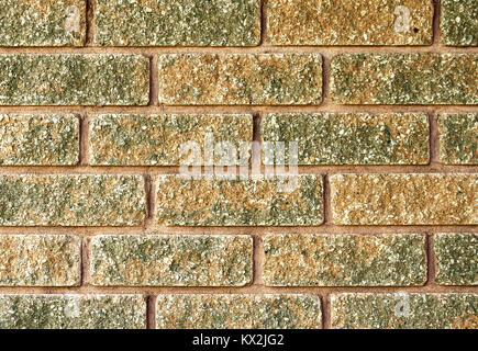 Close up of laid brick in two tone color of red and moss green - Stock Photo